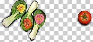 Organic Food Vegetarian Cuisine Vegetable Veganic PNG