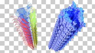 3D Computer Graphics Fibril Amyloid Beta Fractal PNG