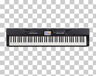 Casio Privia Pro PX-560 Digital Piano Musical Instruments Stage Piano PNG