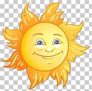 Face Orange Sunflower PNG