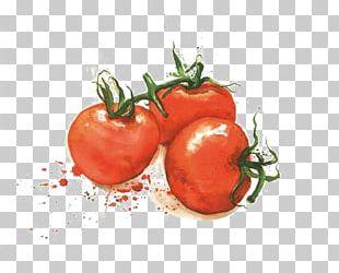 Tomato Varenye Fruit Vegetable Illustration PNG