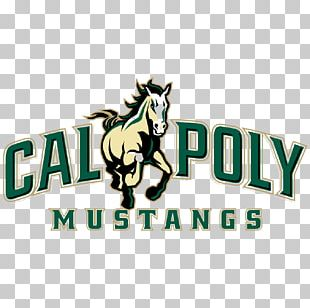 Cal Poly Mustangs Men's Basketball Cal Poly Mustangs Baseball Cal Poly Mustangs Women's Basketball Cal Poly Ticket Office Cal Poly San Luis Obispo College Of Architecture And Environmental Design PNG