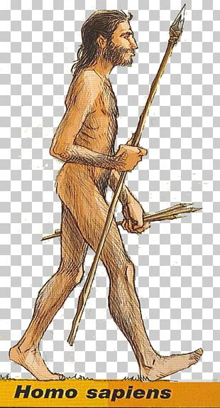 Homo Sapiens Human Behavior Spear Weapon PNG