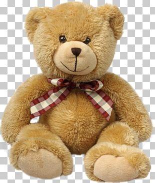 Teddy Bear Stuffed Animals & Cuddly Toys Child PNG