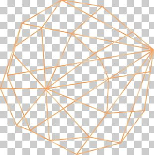 Solid Geometry Beach Rose PNG