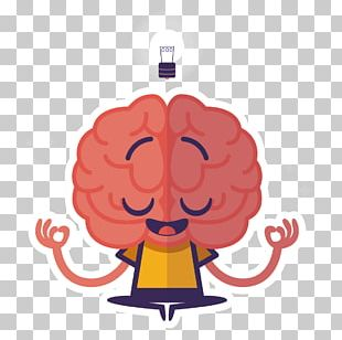 Human Brain Thought Midbrain PNG