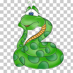 Snake Green Anaconda Boa Constrictor PNG