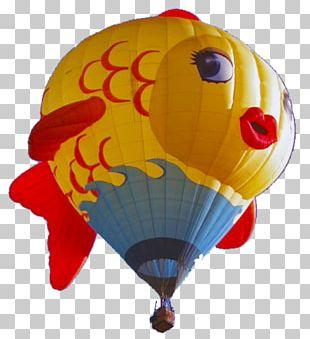 Hot Air Balloon Festival Albuquerque International Balloon Fiesta Night Glow PNG