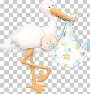 Infant Baby Shower Boy PNG
