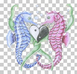 Seahorse Pipefishes And Allies Logo PNG