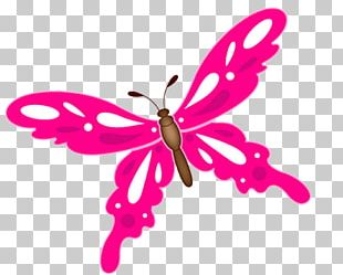 Butterfly Illustration PNG