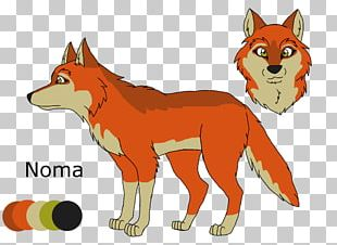 Red Fox Dog Coyote Drawing Red Wolf PNG
