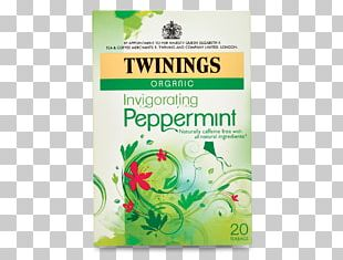 Green Tea Peppermint Earl Grey Tea Tea Bag PNG