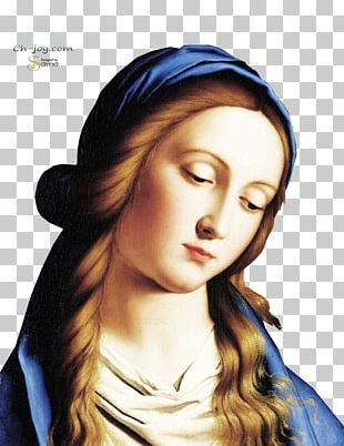 Mary Our Lady Of The Rosary Religious Art Madonna PNG