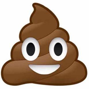 Pile Of Poo Emoji Feces Sticker Defecation PNG