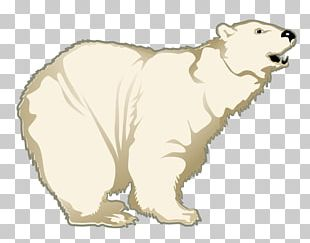 Polar Bear Arctic Fox Portable Network Graphics PNG