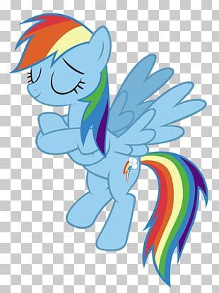 Rainbow Dash My Little Pony PNG