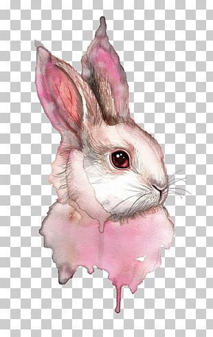 Watercolor Painting Art Rabbit PNG