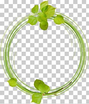 Leaves Ring PNG