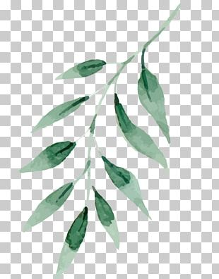 Watercolor Painting Drawing Art Leaf PNG