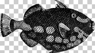 Deep Sea Fish PNG