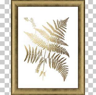 Frames Gold Leaf Fern Art PNG