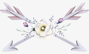 Hand Painted Watercolor Arrow Feather Decoration PNG