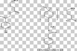 Organic Synthesis Organic Chemistry Chemical Reaction Chemical Synthesis Protecting Group PNG