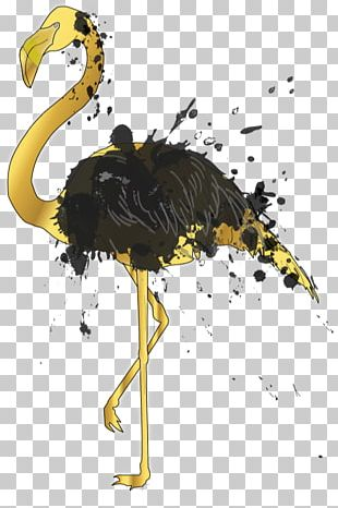 Flightless Bird Common Ostrich Ratite Crane PNG