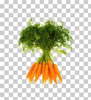 Vegetable Organic Food Fruit Carrot PNG