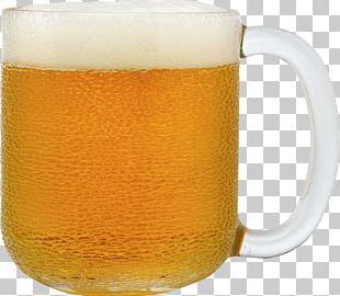 Beer Bottle Lager PNG