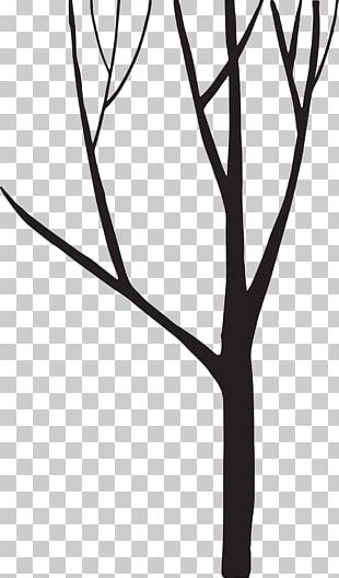 Black And White Silhouette Tree PNG
