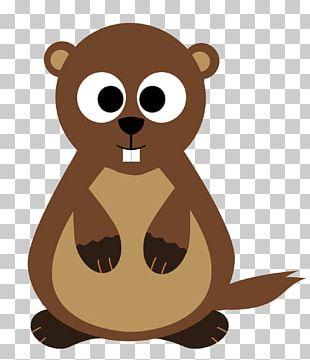 Groundhog Day Bear Hibernation Animal PNG
