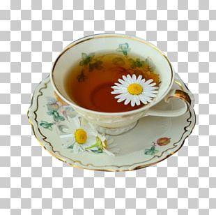 Green Tea Drink Herbal Tea PNG