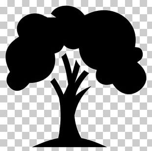 Silhouette Tree Line Art PNG