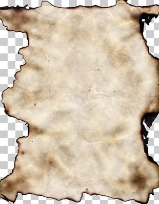 Paper Texture PNG