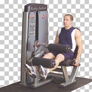 Leg Extension Leg Curl Leg Press Exercise Calf PNG