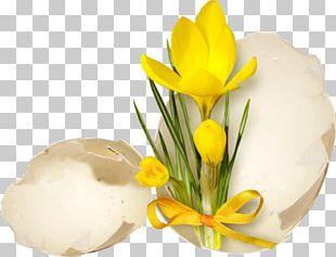 Easter Egg Easter Monday November PNG