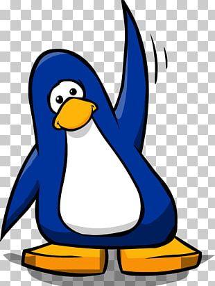 Club Penguin Bird Gentoo Penguin King Penguin PNG