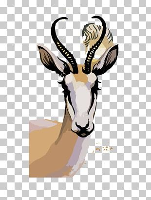 Springbok Watercolor Painting Photography Illustration PNG