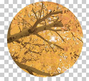 Leaf Autumn Shading PNG