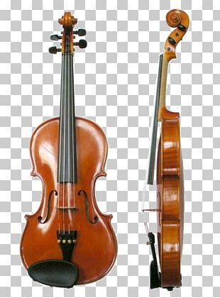 Violin Musical Instruments String Instruments Fiddle Viola PNG
