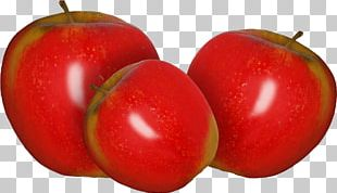 Apple Fruit Auglis Photography PNG