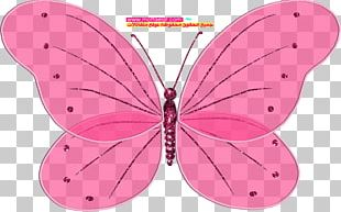Blingee Animation User VKontakte PNG, Clipart, Animation