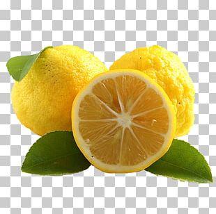 Citrus Junos Juice Tea Japanese Cuisine Fruit PNG