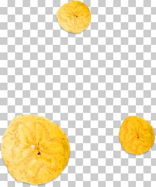 Citrus Junos Vegetarian Cuisine ARA Food Corporation Winter Squash PNG