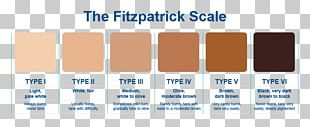 Human Skin Color Fitzpatrick Scale Light Skin PNG