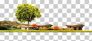 Flowerpot Floral Design Property Houseplant Tree PNG