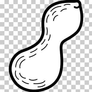 Black And White Food Peanut PNG