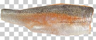 Sea Trout Fish Fillet Seafood PNG